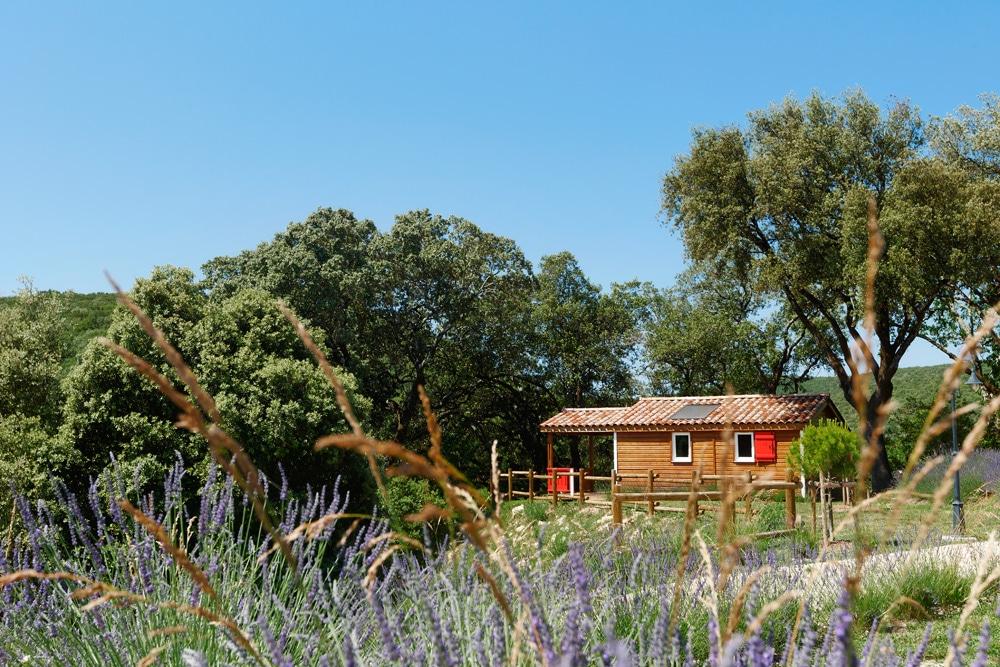 domaine sevenier camping location vacance en ardeche chalet chene vert 3 - Gallery