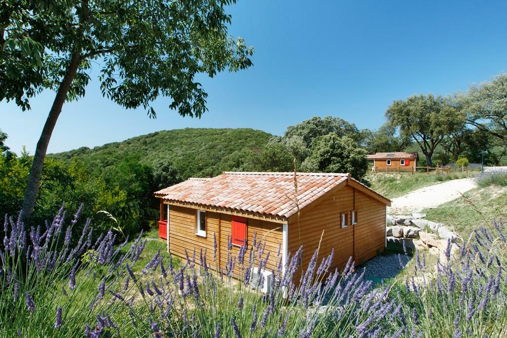 domaine sevenier camping location vacance en ardeche chalet chene vert 1 - Gallery