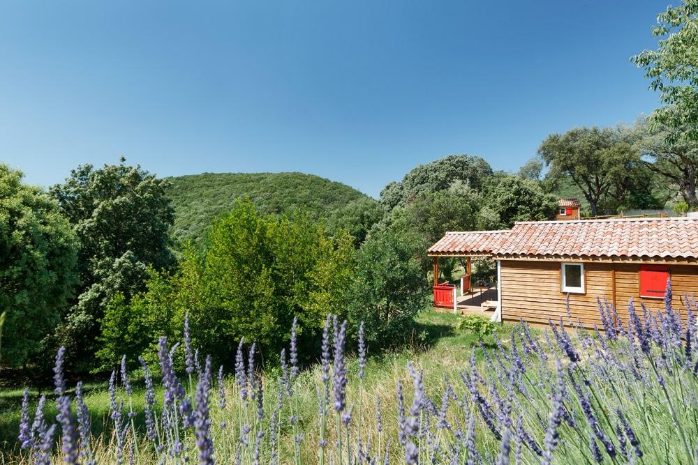domaine sevenier camping location vacance en ardeche chalet chene vert 2 - Gallery