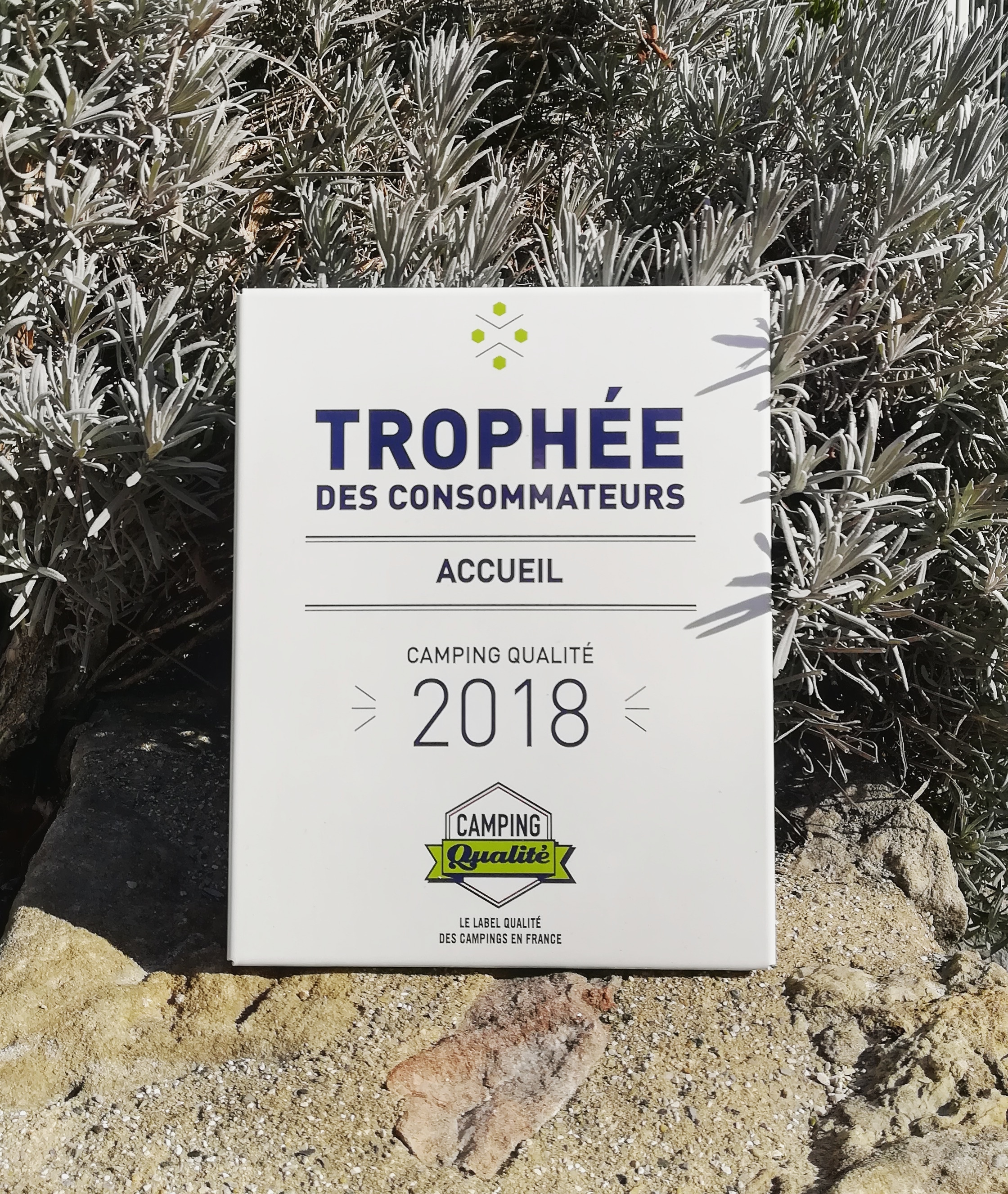 IMG 20190222 150457 611 - Quality trophy